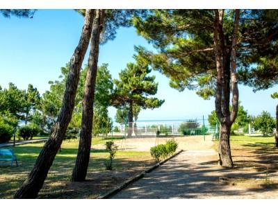 Приветливый берег |Геленджик | внешний вид, территория